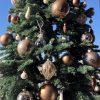 2017Xmasの準備。今年はクリスマスツリーの飾り付け。