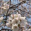 基山パーキングエリア(四国九州R-1第15番)